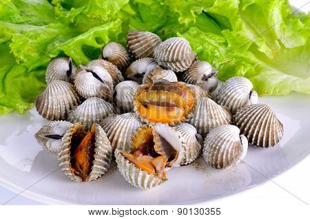 Boiled Cockles With Lettuce