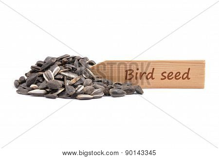 Bird Seed At Plate