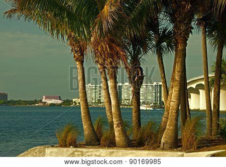 Sarasota from Bird Key