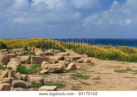 Archaeological Excavations In Cyprus. Sea View.