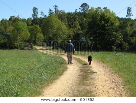 A Man And His Dog'S Afternoon Walk