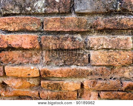 Old Ruin Building Brick Wall Texture