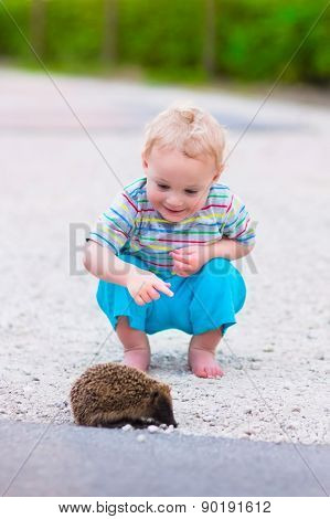 Two Kids Watching A Hedgehog