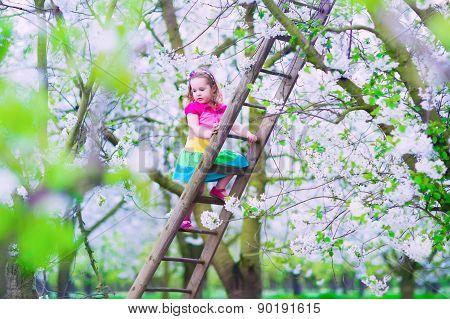Little Girl On A Ladder In Apple Tree Garden