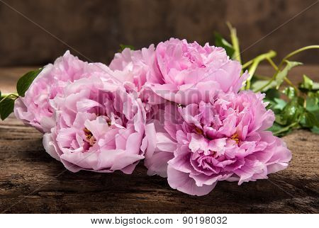 Beautiful Bouquet Of Pink Peonies