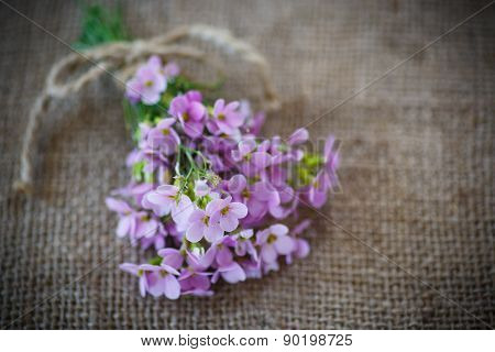 Bouquet Of Spring Flowers