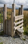 stock photo of cattle dog  - Step Stile style with gate for dog by gate Snowdonia National Park Gwynedd Wales United kingdom - JPG