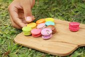 image of picking tray  - Hand were picked colorful of macaron on a brown tray - JPG