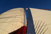 stock photo of sails  - The sails and the mast of a sailing boat - JPG