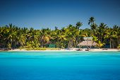 stock photo of caribbean  - Caribbean wild beach Punta Cana, Dominican Republic ** Note: Soft Focus at 100%, best at smaller sizes - JPG