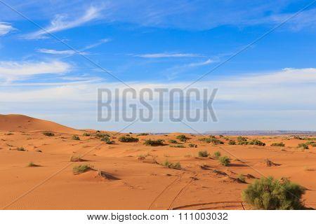 Erg Chebbi. sahara desert Morocco