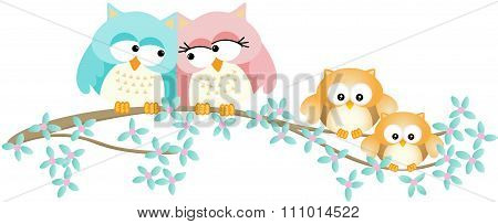 Cute owl family on spring tree branch