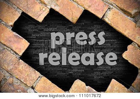 Hole In The Brick Wall With Word Press Release