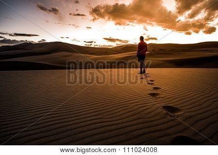 Great Dunes Desert Landscape