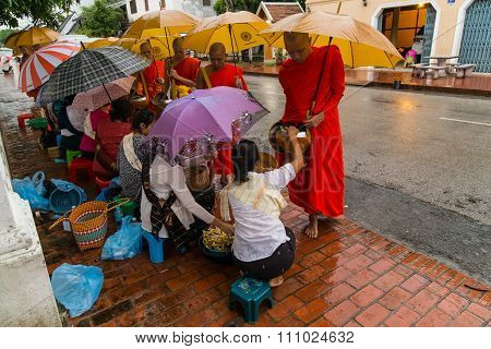 Luang Prabang, Laos - Circa August 2015: Traditional Alms Giving Ceremony Of Distributing Food To Bu