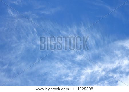 Branched High White Clouds