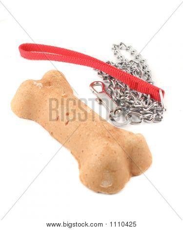 Correa y hueso de perro