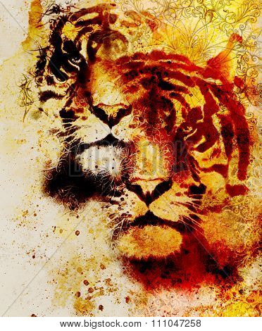 tiger collage on color abstract  background and mandala with ornament , wildlife animals.