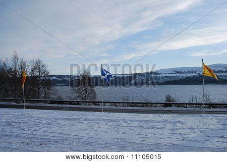 Flags In Winter