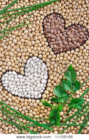 Lentils soybeans beans with herbs - pulse concept