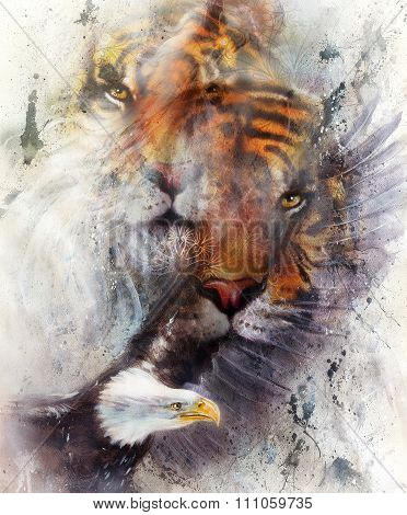 tiger with eagle and ornamental mandala. wildlife animals on painting background, Eye contact.