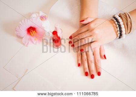 Beautiful woman's hands after manicure