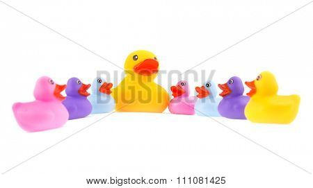 Big rubber duck as a center of attention of  little ducklings - concept of leading or teaching