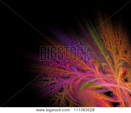 Abstract Black Background With Rainbow And Rose Color Flower Or Multicolor Branch In The Corner Text