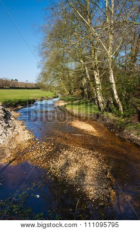 English Stream In Spring.