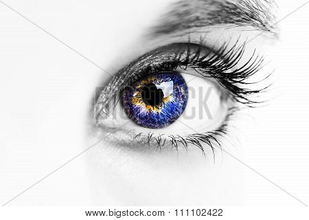 an insightful look on a blue eye