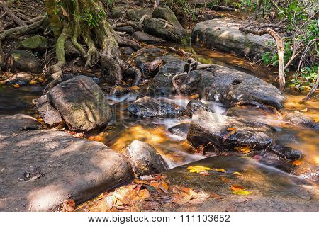 Brook At Kbal Spean