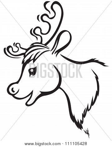 Muzzle Reindeer