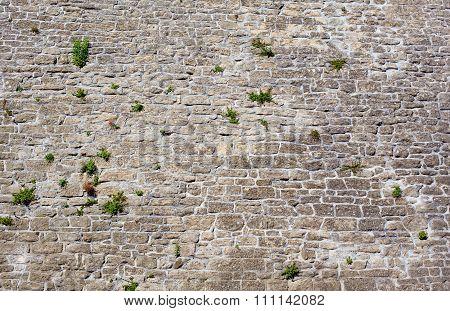 Castle Wall.