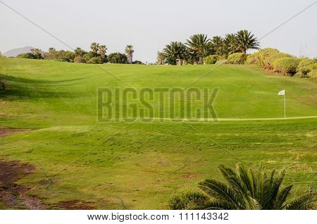 Golf Green Grass Fiel