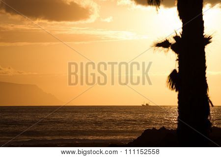 Contours Of Palms At Sunset. On Background - Mountains And Ship.