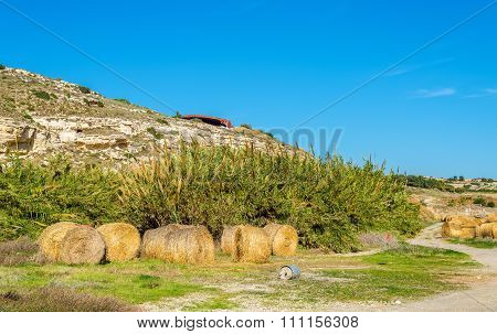 Haystacks At The Foot Of The Kourion Mount - Cyprus