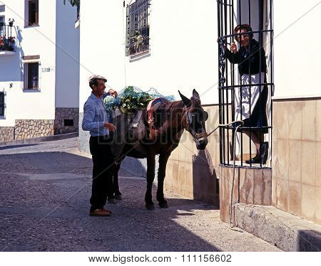 Man and donkey in village street, Jimena de la Frontera.