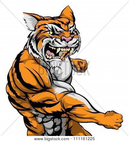 Tiger Character Fighting