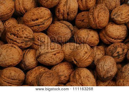 Walnut autumn background