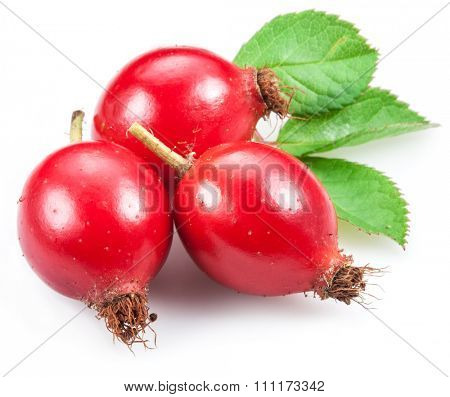 Rose-hips with leaf isolated on a white background.