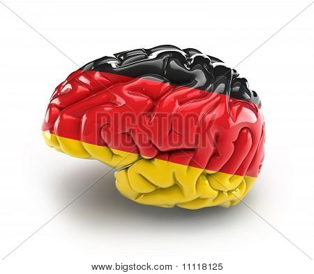 Germany Brain