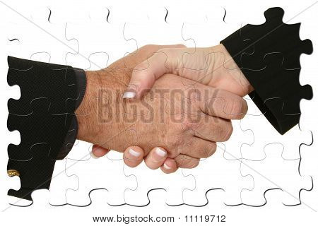 Male Female Handshake Puzzle