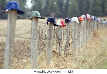 Caps On Fence Posts poster