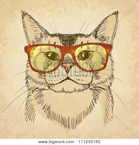 Hipster Cat. Vector illustration, eps10.