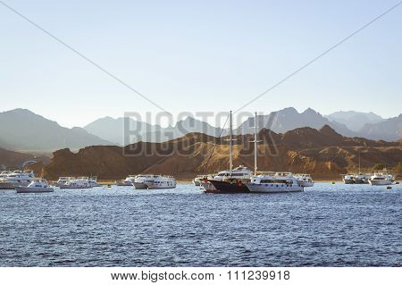 Marina: Pleasure Sightseeing Boats On The Parking Lot Of Boat Park In Sharm El Sheikh