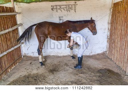 Woman With Her Horse Cleaning The Hoof