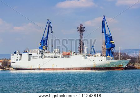 Livestock Carrier Ship