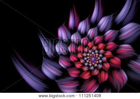 abstract fractal background, spiral, flower