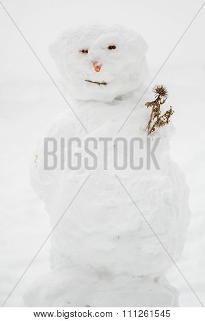 Ugly Snowman