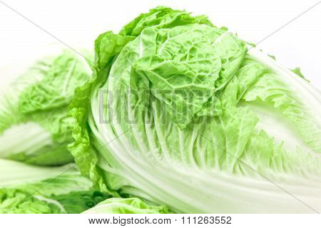 Close Up And Selective Focus Fresh Chinese Cabbage  On A White Background